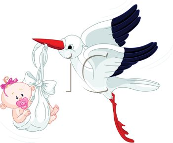 Cartoon of the Stork Bringing a Baby Girl Home