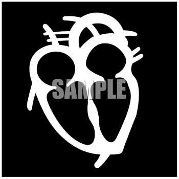Medical Icon of the Human Heart