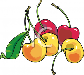 Red and Yellow Cherries