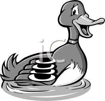 Black and White Cartoon of a Male Duck or Mallard