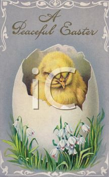 Nostalgic Easter Greeting Card with a Hatching Chick