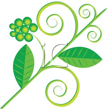 Leaf Flourish Design