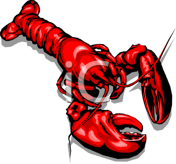 Realistic Red Lobster Drawing