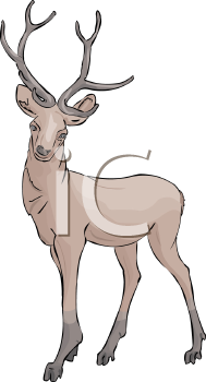 a clip art illustration of a deer standing at attention