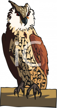 clip art illustration of a barn owl sitting on a perch