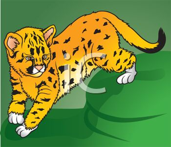 clip art illustration of a young tiger cub walking in the grass looking at his surroundings