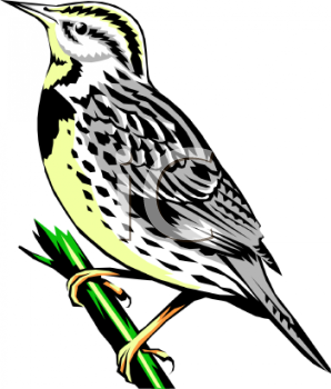 clip art image of a bird standing on a branch
