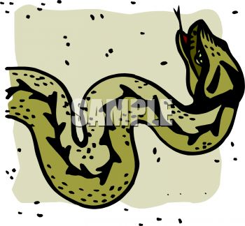 picture of a green and black snake in a vector clip art illustration