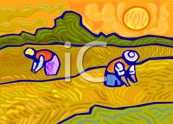image of people working in a wheat field on a hot sunny day in a vector clip art illustration