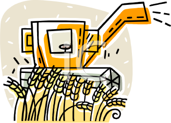 Image of a Machine Harvesting Wheat In a Wheat Field In a Vector ...