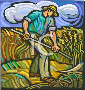 image of a man working in the wheat fields in a vector clip art illustration