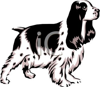 picture of a cocker spaniel dog standing at attention in a vector clip art illustration
