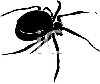 Image of a black spider in a vector clip art illustration