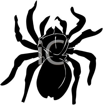 Picture of a black spider in a vector clip art illustration