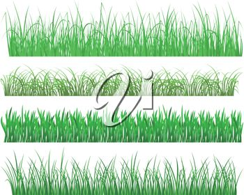Various types of lawns or grasses