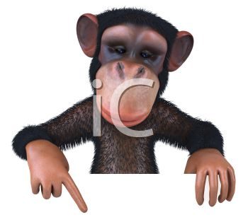 Picture of a chimpanzee pointing to the ground in a vector clip art illustration
