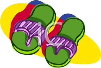 Picture of a pair of green and purple sandals in a vector clip art illustration