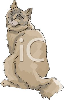 picture of a brown cat sitting looking over it's shoulder in a vector clip art illustration