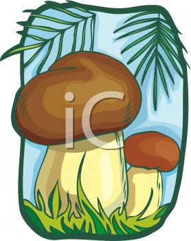 picture of two mushroom in the forest in a vector clip art illustration