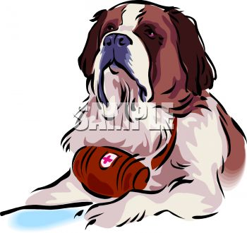 Picture of a large Saint Bernard wearing a medical barrel around his neck in a vector clip art illustration