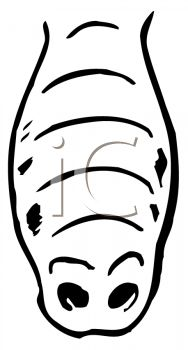 picture of a nose of an animal in a vector clip art illustration