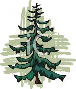 picture of an evergreen tree in a vector clip art illustration rh clipartguide com evergreen tree clipart black and white evergreen bough clipart