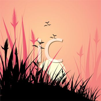 picture of a scenery of beautiful field of pink flowers, birds, and a full moon