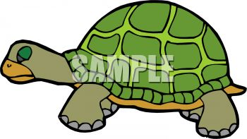 picture of a turtle standing in a vector clip art illustration