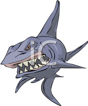 picture of an angry shark showing his teeth in a vector clip art illustration