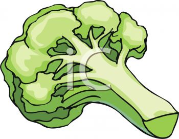 picture of a stalk of fresh broccoli in a vctor clip art illustration