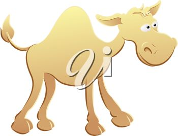 picture of a camel standing with a funny face in a vector clip art illustration