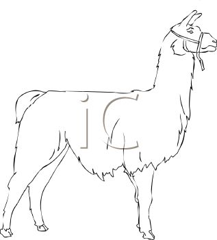 Llama Clipart Black And White 0511-1205-3018-0625 picture of