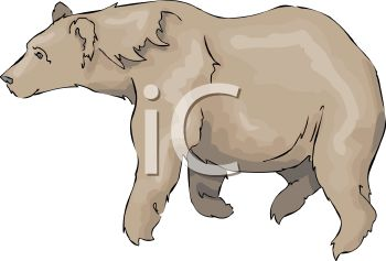 picture of a large brown bear walking in a vector clip art illustration