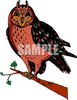picture of a colorful owl sitting on a perch in a vector clip art illustration