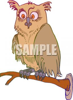 picture of a brown owl with big eyes sitting on a perch in a vector clip art illustration