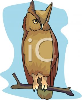 picture of a horned owl sitting on a perch in a vector clip art illustration