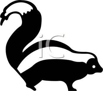 picture of a skunk with his tail up in the air in a vector clip art illustration
