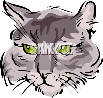 picture of a closeup a cat's face in a vector clip art illustration