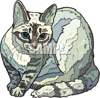 picture of a striped cat sitting down ready to attack in a  v ector clip art illustration