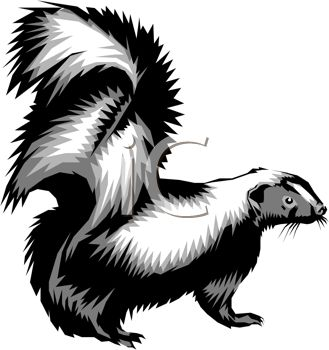 picture of  a cartoon skunk in a vector clip art illustration