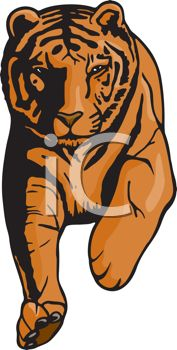 picture of a tiger running on a white background in a vector clip art illustration