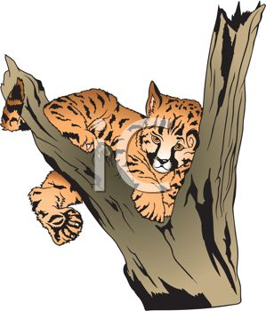 picture of a tiger cub laying in a tree in a vector clip art illustration
