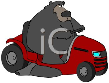 clip art illustration of a big bear riding a lawnmower in a vector clip art illustration