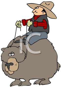 picture of a cowboy riding a bear, pulling on the reigns in a vector clip art illustration