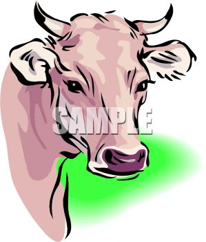 picture of a bull's head in a vector clip art illustration