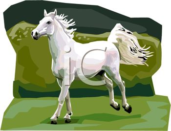 picture of a white horse rearing up it's back legs in the grass in a vector clip art illustration