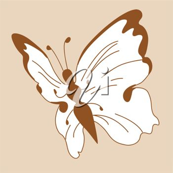 picture of a white butterfly with brown markings in a vector clip art illustration