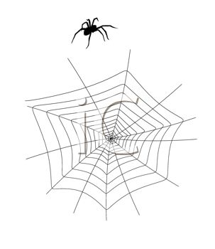 picture of a spider walking by it's web in a vector clip art illustration