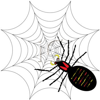 picture of a black widow spider in it's web in a vector clip art illustration