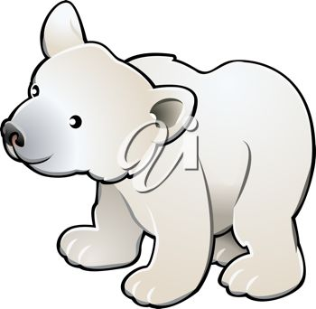 Picture of a young polar bear on a white background in a vector clip art illustration